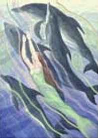 rencontre dauphin corse